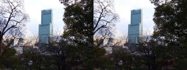 天王寺公園 茶臼山からのあべのハルカス(交差法)