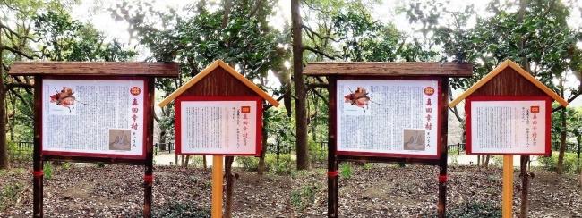 天王寺公園 茶臼山③(平行法)