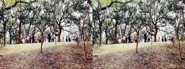 天王寺公園 茶臼山②(平行法)
