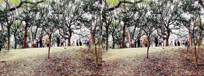 天王寺公園 茶臼山②(交差法)