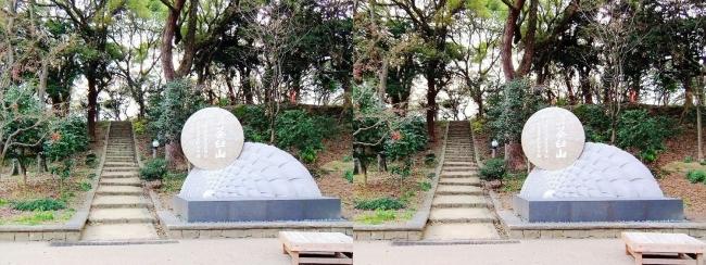 天王寺公園 茶臼山①(交差法)