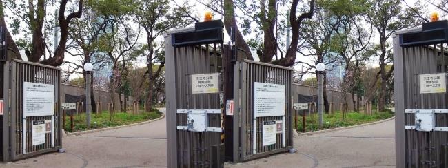 天王寺公園 茶臼山ゲート(平行法)
