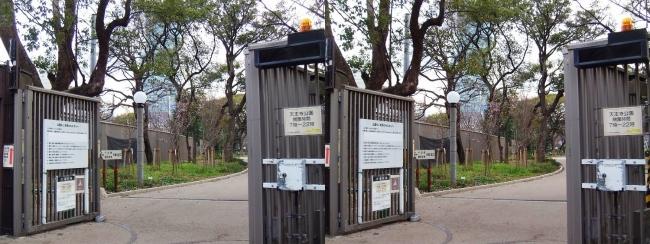 天王寺公園 茶臼山ゲート(交差法)