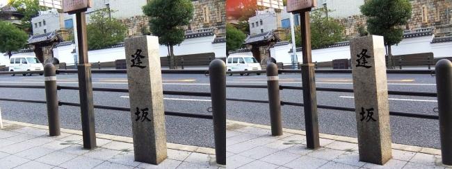 逢坂②(交差法)
