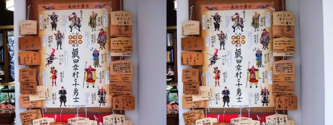 安居神社 絵馬(平行法)