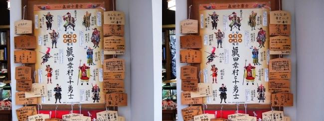 安居神社 絵馬(交差法)