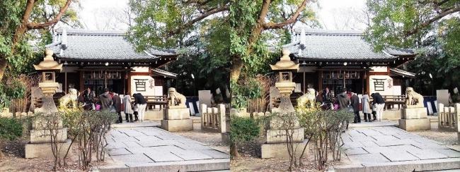 安居神社 拝殿(平行法)