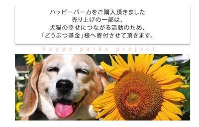 IMG_0768.jpg