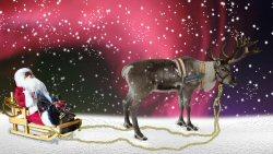 01b 250 Santa reindeer