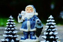 01a 250 Santa fir