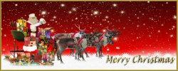 01b 250 reindeer santa