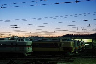 s-IMGP5828-1.jpg