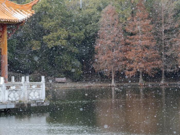 0C6A1946雪景色
