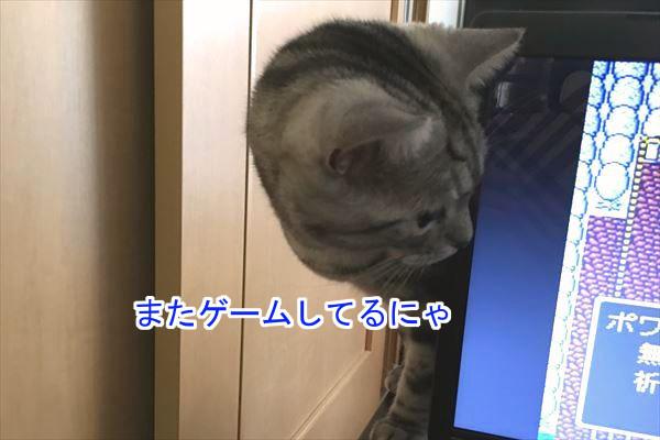 20170105_135132.jpg