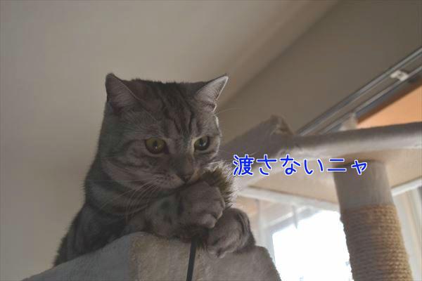 20170106_092135_R.jpg