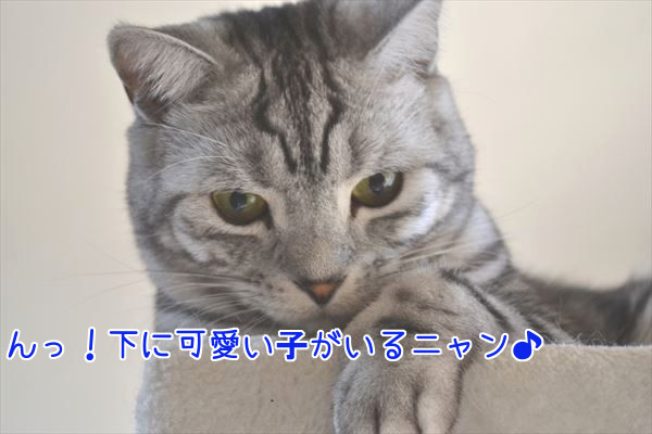 20170125_090111_R.jpg
