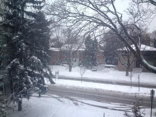雪@-20℃