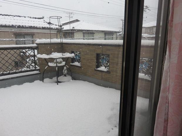 冬ー238