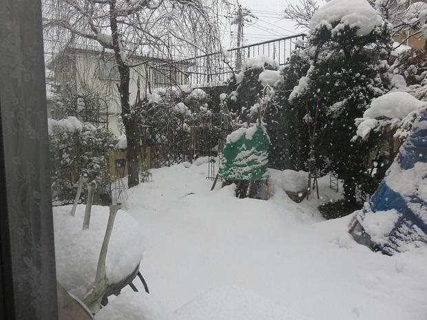 冬ー336