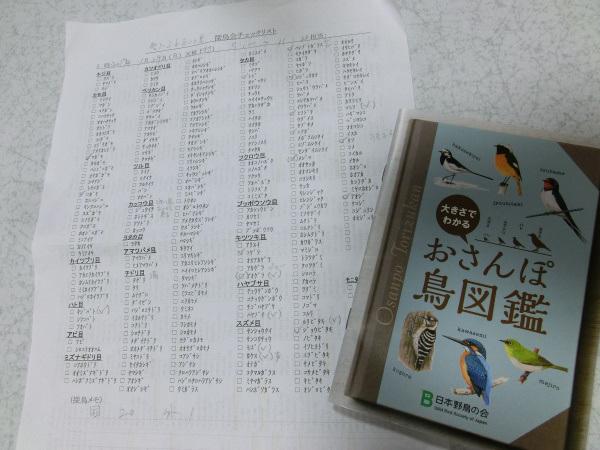 170129 探鳥会9