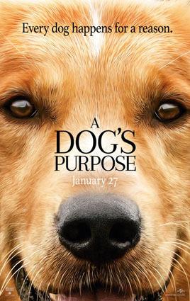 dogspurpose_1.jpg