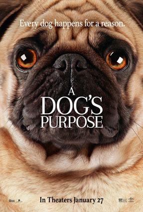dogspurpose_2.jpg
