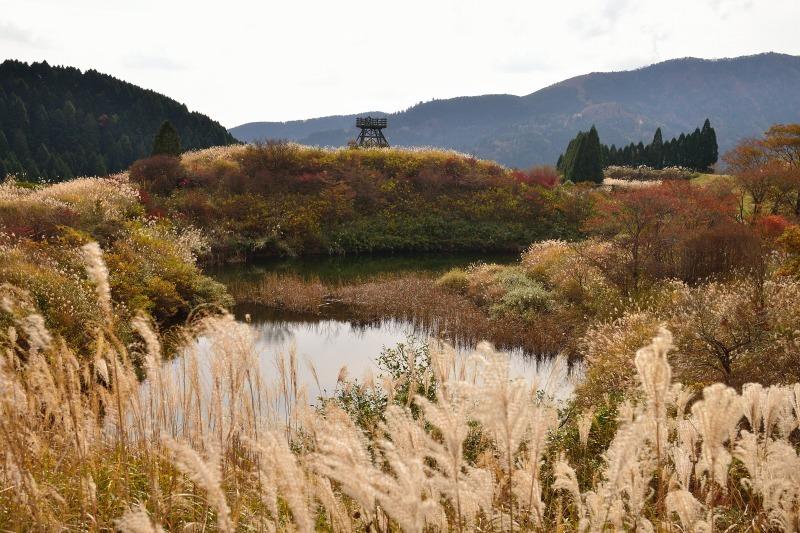 161113釈迦岳 (14)