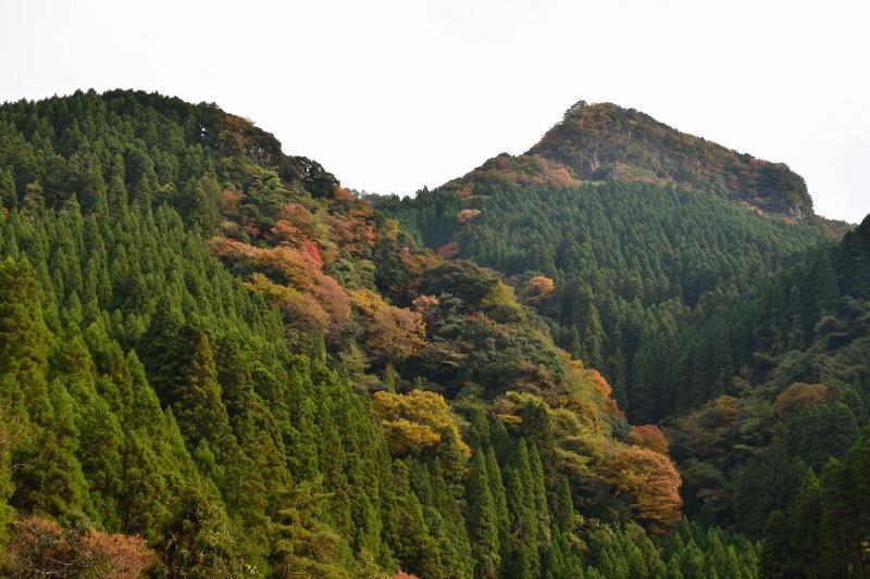 161113釈迦岳 (16)