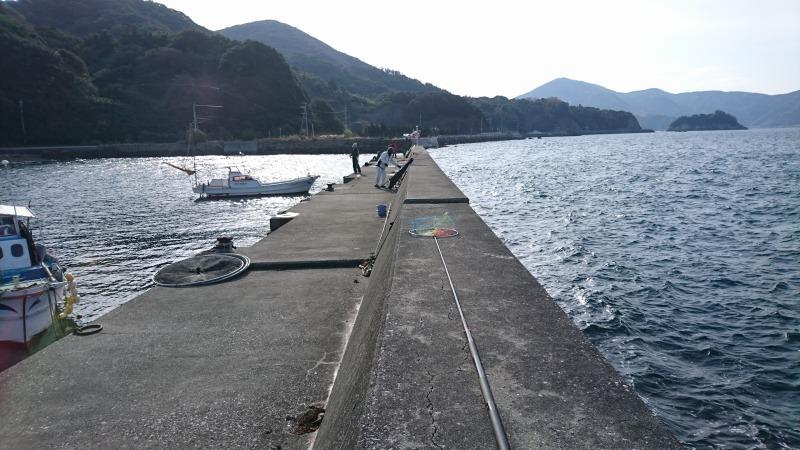 161224モイカ釣り (2)