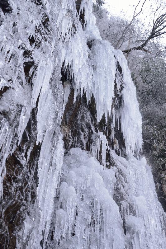 四王寺の滝 (19)