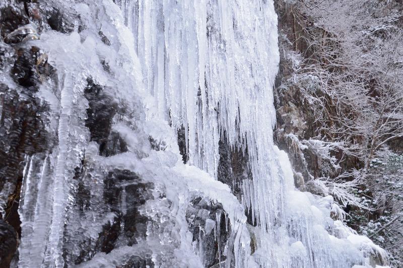 四王寺の滝 (20)