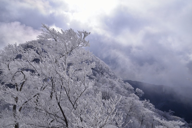 英彦山 (7)