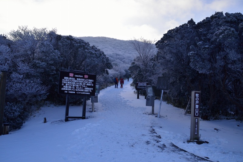 登山口~星生山 (2)