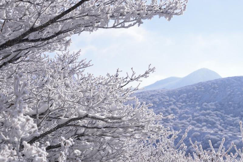 登山口~星生山 (12)