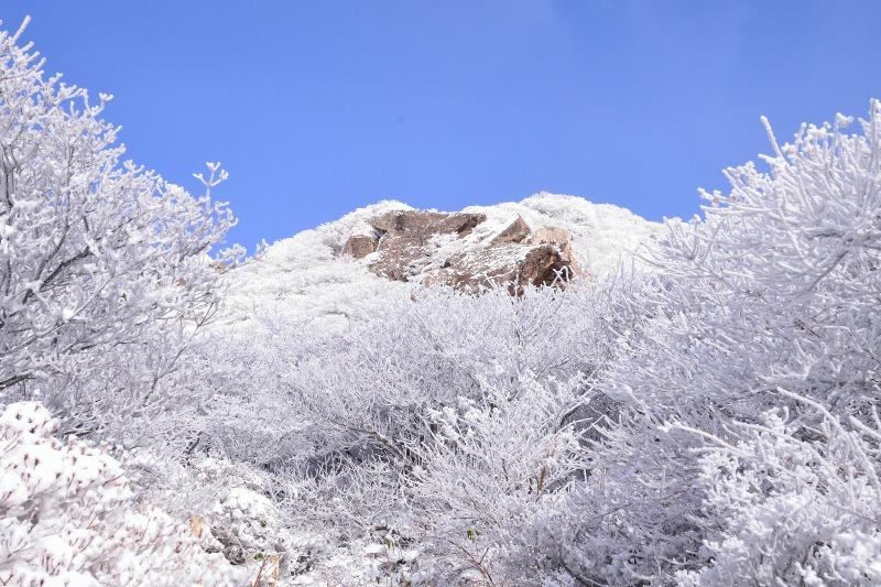 登山口~星生山 (10)