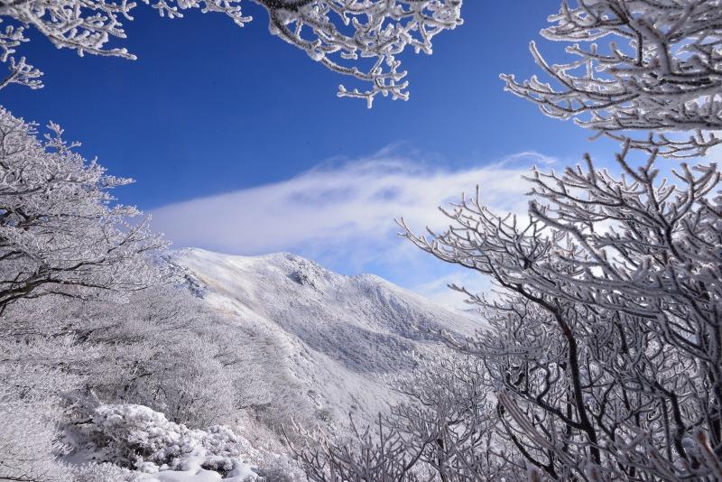 登山口~星生山 (17)