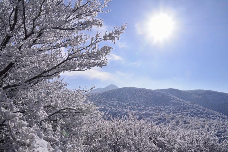登山口~星生山 (13)