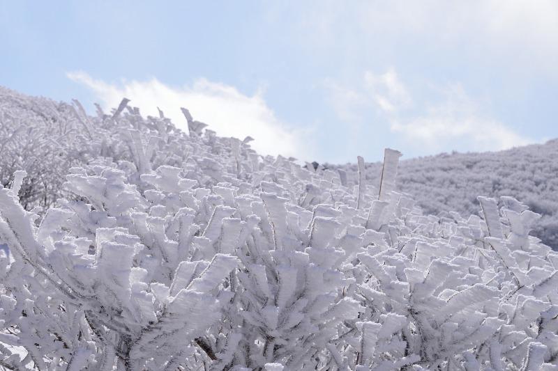 御池~登山口 (2)
