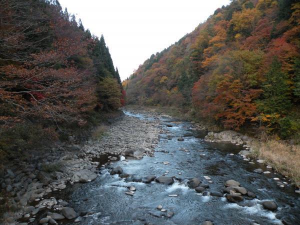 郡上谷橋からの紅葉