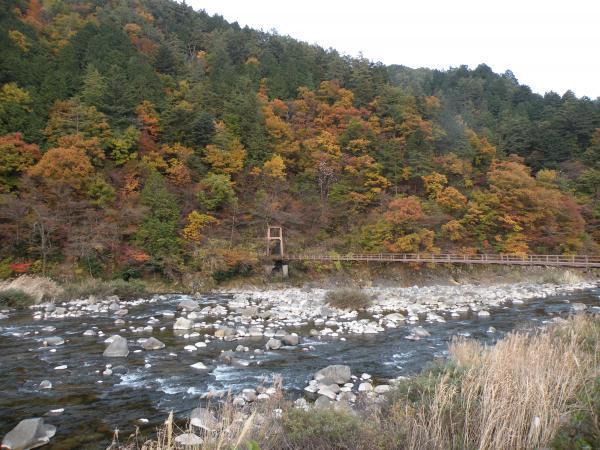 吊り橋と紅葉