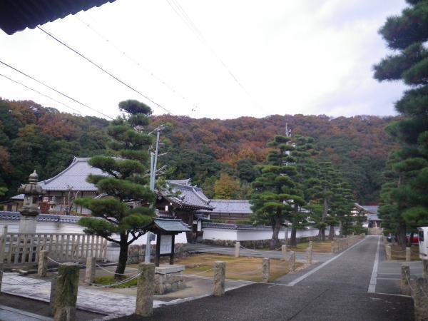 瑞龍寺と裏山の紅葉