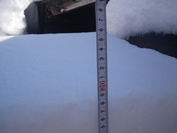 1月19日の積雪
