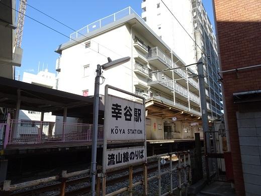 DSC08538幸谷3