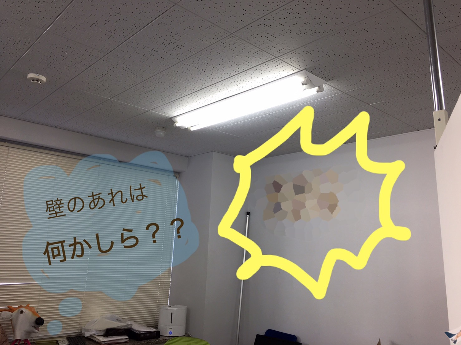 S__18341899.jpg