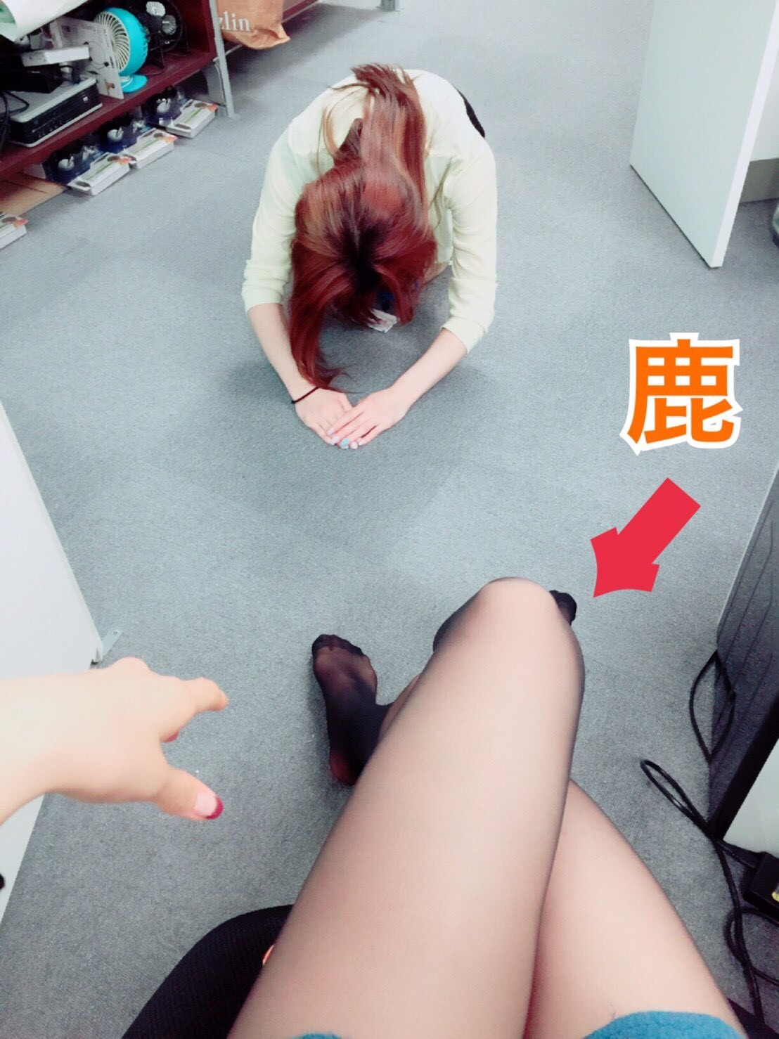 S__2228245.jpg