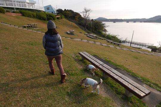 04SA内散歩2