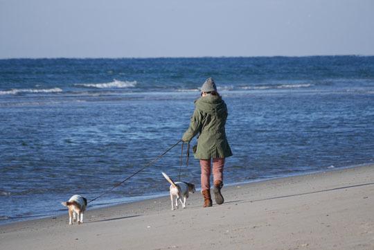 15海岸散歩3