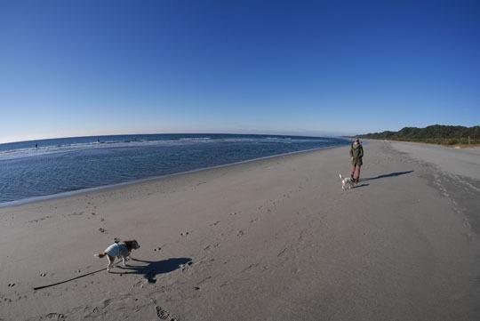 14海岸散歩2