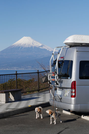 015富士山とワンコ