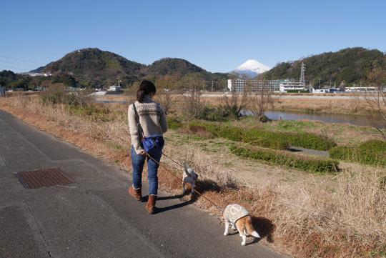 012伊豆長岡でお散歩